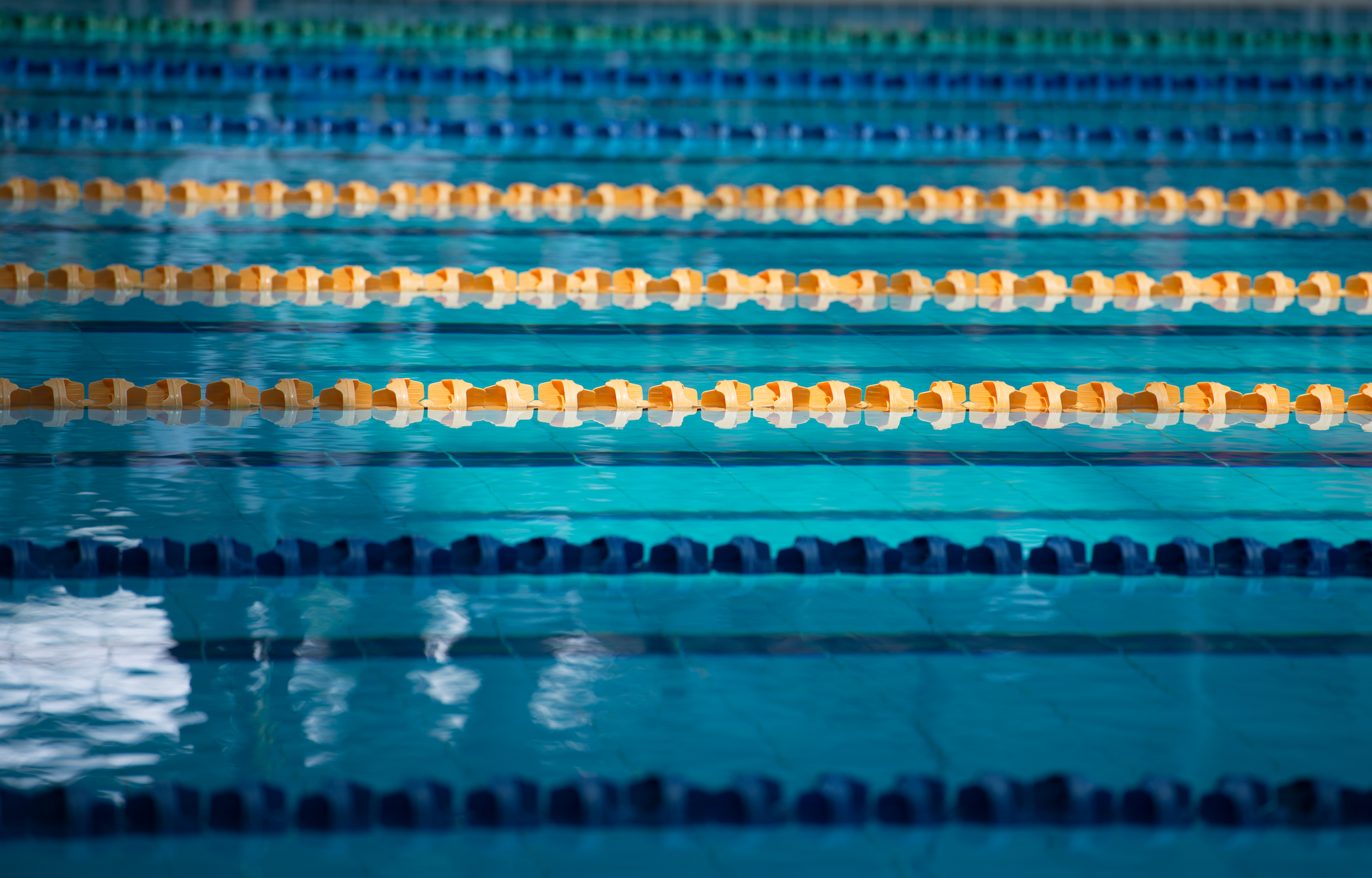 swimming finals photo essay raffles press joanna chue