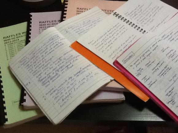 One author's Biology school notes complete with her handwritten ones. One more thick binder has yet to be distributed.
