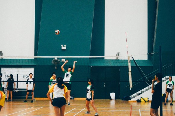 volley_4