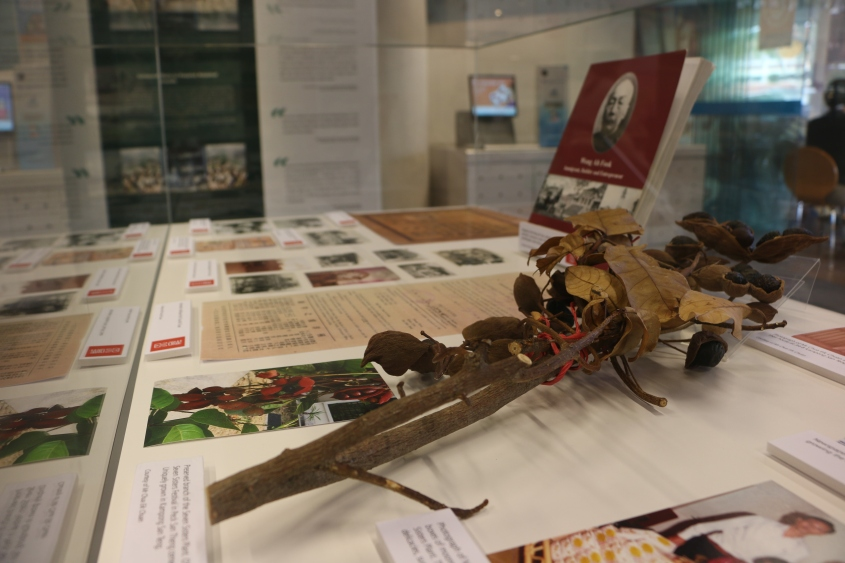 Actual old photographs and artefacts from the time, including a Seven Sisters plant specimen.