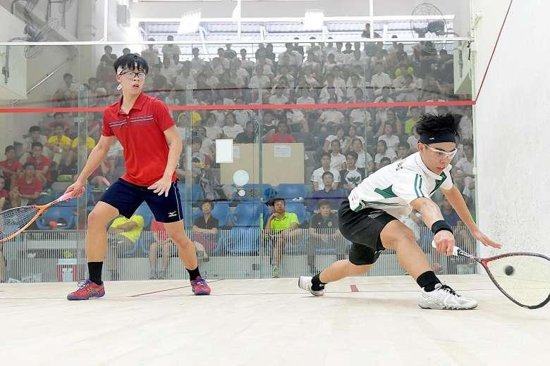 squash 2