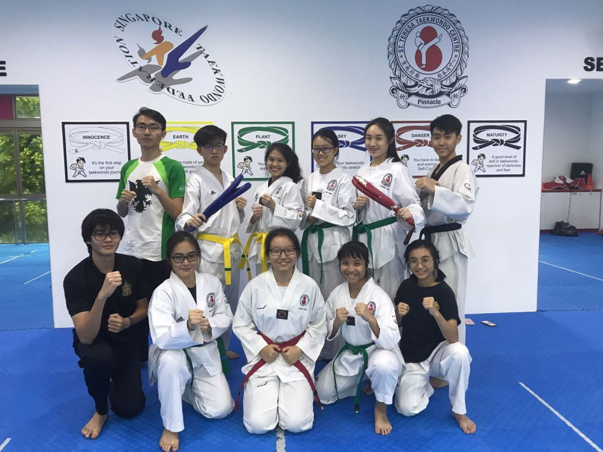 CCA Previews '18: Raffles Taekwondo